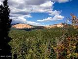 10 Hay Canyon - Photo 1