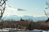 9742 Ridge Pine Road - Photo 11