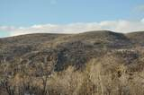 9742 Ridge Pine Road - Photo 6
