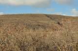 9742 Ridge Pine Road - Photo 7