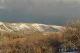 9742 Ridge Pine Road - Photo 9