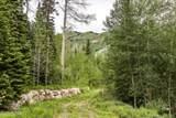 49 Silver Strike Trail - Photo 11