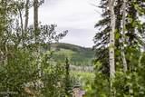 49 Silver Strike Trail - Photo 13