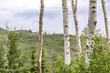 49 Silver Strike Trail - Photo 15