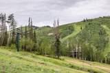 49 Silver Strike Trail - Photo 17