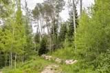 49 Silver Strike Trail - Photo 18
