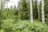 49 Silver Strike Trail - Photo 7