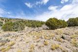2379 La Sal Peak Dr (Lot 506) - Photo 1