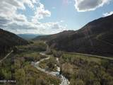 2480 Weber Wild Road - Photo 11