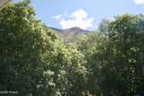 4253 Mount Olympus Way - Photo 117