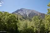 4253 Mount Olympus Way - Photo 119