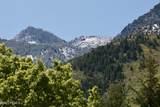 4253 Mount Olympus Way - Photo 124