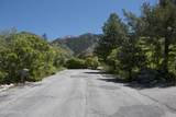 4253 Mount Olympus Way - Photo 130