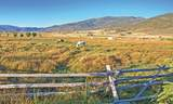 1384 Dovetail Drive - Photo 8