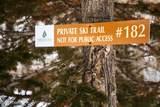 182 White Pine Canyon Road - Photo 63