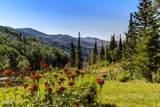 182 White Pine Canyon Road - Photo 72