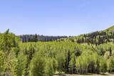 264 White Pine Canyon Road - Photo 38