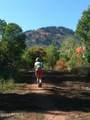 208 White Pine Canyon Road - Photo 1