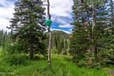 208 White Pine Canyon Road - Photo 10