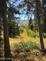 208 White Pine Canyon Road - Photo 12