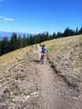208 White Pine Canyon Road - Photo 14