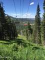 208 White Pine Canyon Road - Photo 15