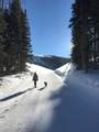 208 White Pine Canyon Road - Photo 19