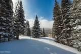 208 White Pine Canyon Road - Photo 21