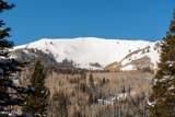 208 White Pine Canyon Road - Photo 3