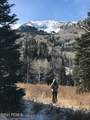 208 White Pine Canyon Road - Photo 5