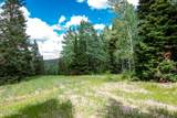 329 White Pine Canyon Road - Photo 3
