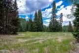 329 White Pine Canyon Road - Photo 5