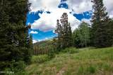 329 White Pine Canyon Road - Photo 8