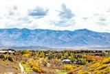 8363 Ranch Garden Road - Photo 1