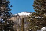 208 White Pine Canyon - Photo 2