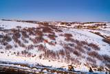 4050 Pinnacle Sky Loop - Photo 16