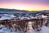 4050 Pinnacle Sky Loop - Photo 2