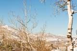 2432 Iron Mountain Drive - Photo 22