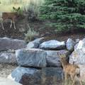 7978 Promontory Ranch Road - Photo 33