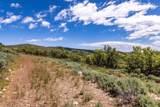 1625 Red Hawk Trail - Photo 19