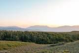 10327 Aspen Ridge Road - Photo 30