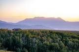 10327 Aspen Ridge Road - Photo 41