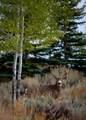 5847 Dakota Trail - Photo 6