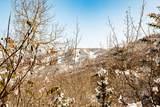 2432 Iron Mountain Drive - Photo 28