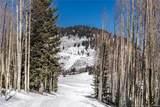 306 White Pine Canyon Road - Photo 12