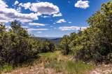 1625 Red Hawk Trail - Photo 6