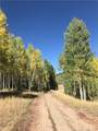 306 White Pine Canyon Road - Photo 10