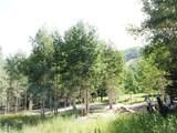 269 White Pine Canyon Road - Photo 2