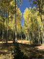 306 White Pine Canyon Road - Photo 2