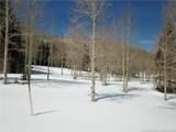 268 White Pine Canyon Road - Photo 10